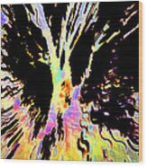 Color Trip Wood Print