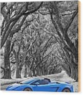 Color Your World - Lamborghini Gallardo Wood Print by Steve Harrington