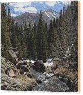 Colorado Wild Wood Print
