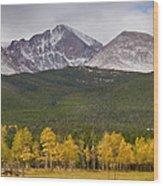 Colorado's Playground Wood Print