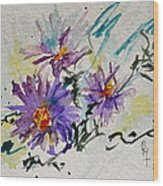 Colorado Asters Wood Print