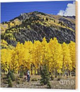 Colorado Autumn Hike Wood Print