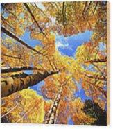 Colorado Autumn Sky Wood Print