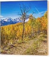 Colorado Backcountry Autumn View Wood Print