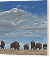 Colorado Bison Moving On Wood Print