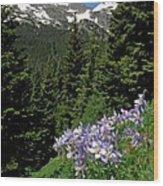 Colorado Classic Wood Print by George Tuffy