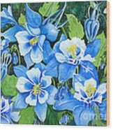 Colorado Columbines Wood Print