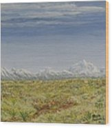 Colorado Eastern Plains Wood Print