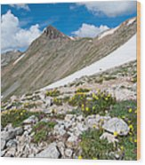 Colorado Elkhead Pass Wood Print