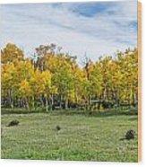 Colorado Fall Panorama Wood Print by Baywest Imaging
