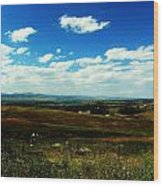 Colorado Fields Wood Print by Christian Rooney