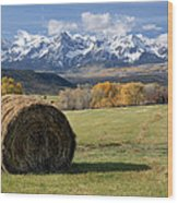 Colorado Haybale Wood Print