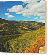 Colorado In Autumn Wood Print
