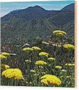 Colorado Rocky Mountain Wood Print
