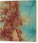 Colorado Map Art Wood Print