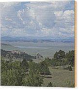 Colorado Meadow Wood Print