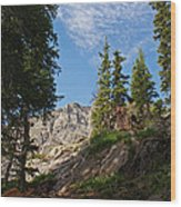 Colorado Mountain Hike Wood Print