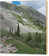 Colorado Mountain Landscape Wood Print