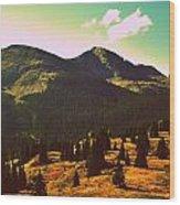 Colorado Number Eight Wood Print