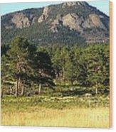 Colorado Outdoors Wood Print