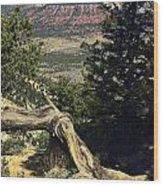 Colorado Plateau Wood Print