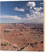 Colorado River Canyon From Dead Horse Wood Print