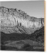 Colorado River Cliff Bw Wood Print
