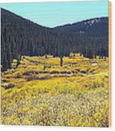 Colorado River Valley In Fall Wood Print
