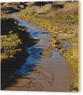Colorado River View Wood Print by Eva Kato