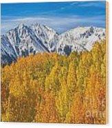 Colorado Rocky Mountain Autumn Beauty Wood Print