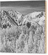 Colorado Rocky Mountain Autumn Magic Black And White Wood Print
