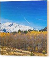 Colorado Rocky Mountain Independence Pass Autumn Pano 1 Wood Print