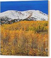 Colorado Rocky Mountain Independence Pass Autumn Pano 2 Wood Print