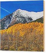 Colorado Rocky Mountain Independence Pass Autumn Panorama Wood Print