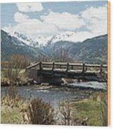 Colorado - Rocky Mountain National Park 03 Wood Print