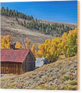 Colorado Rustic Rural Barn With Autumn Colors  Wood Print