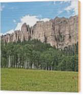Colorado Side Of The Four Corners Area Wood Print