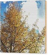 Colorado Sky Wood Print