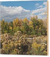 Colorado Urban Autumn Landscape Wood Print