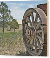 Colorado - Where The Columbines Grow Wood Print by Christine Till