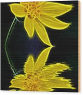 Colorado Wildflower Wood Print