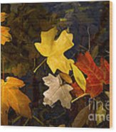 Colored Floaters Wood Print