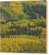 Colored Hillside Wood Print
