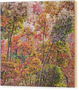 Colored Pallet Smoke Trees Wood Print