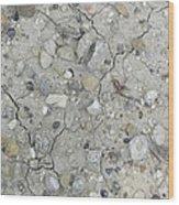 Ground Rocks Wood Print