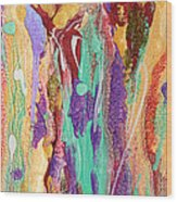 Colorful Abstract Falls Wood Print by Julia Apostolova
