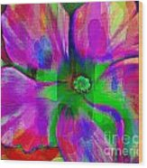 Colorful African Violet Wood Print