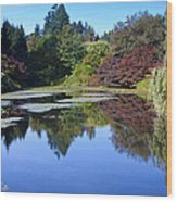 Colorful Arboretum Wood Print
