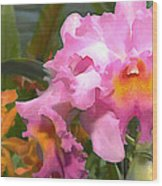 Colorful Assorted Cattleya Orchids Wood Print