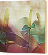 Colorful Calla Wood Print by Eiwy Ahlund